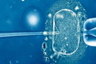 سمینار مهندسی ژنتیک و روشهای انتقال ژن